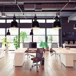 Oficinas verdes o ecológicas - DESMON