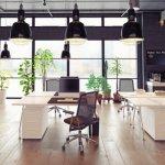 La importancia de las oficinas verdes o ecológicas